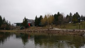 A scenic photo of the Humber Arboretum, showing the pond and the centre for urban ecology.