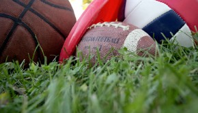 A still life featuring balls from various sports on a sunny, grassy field.